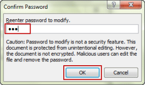 confirm excel workbook modify password