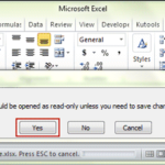 open excel file as read only