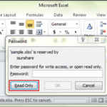 open read-only excel file without modify password