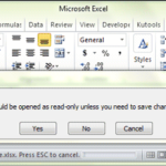 successfully set excel workbook open as read-only
