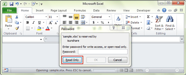 successfully set excel workbook read only by modify password