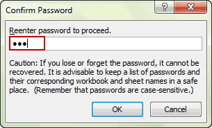 reeneter password in new excel dialog