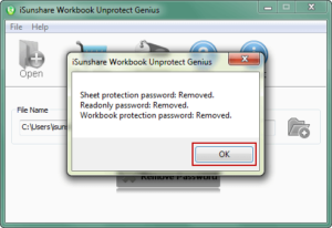 successfully remove workbook edit protection