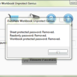 successfully unlock excel file locked for editing