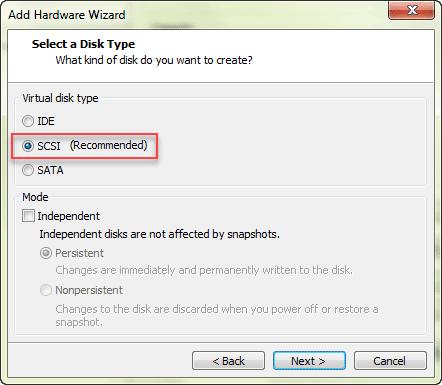 choose virtual disk type