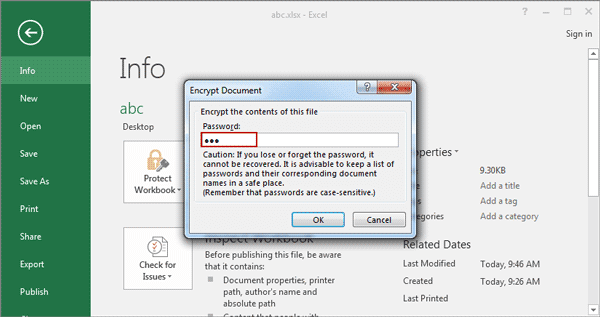 how to set password for excel file in office 2013