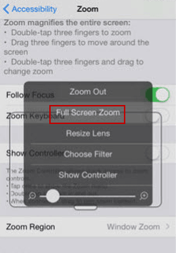 2 Ways to Change Zoom Region on iPhone and iPad