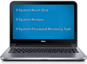 reset Dell administrator password without disk